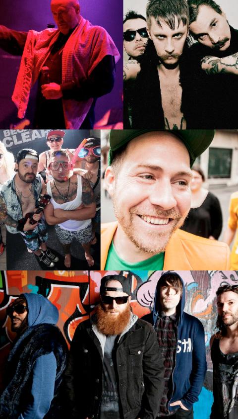 festival-holledau-2015-c