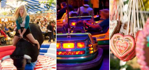mainburger-hopfenfest-2015-b