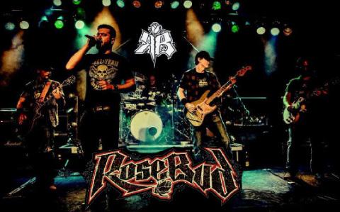 whatever-rocks-bavaria-2015-4