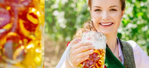 Sommerhoch mit der Hallertauer Bierkönigin 2017/2018